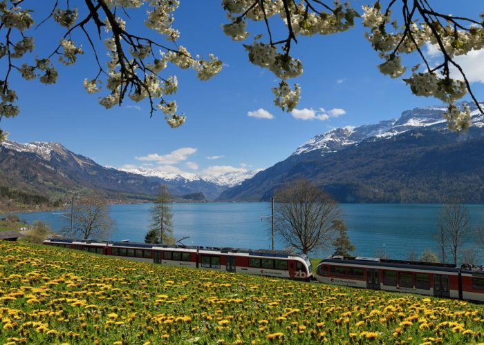 Luzern-Interlaken Express at Lake Brienz, Bernese Oberland.