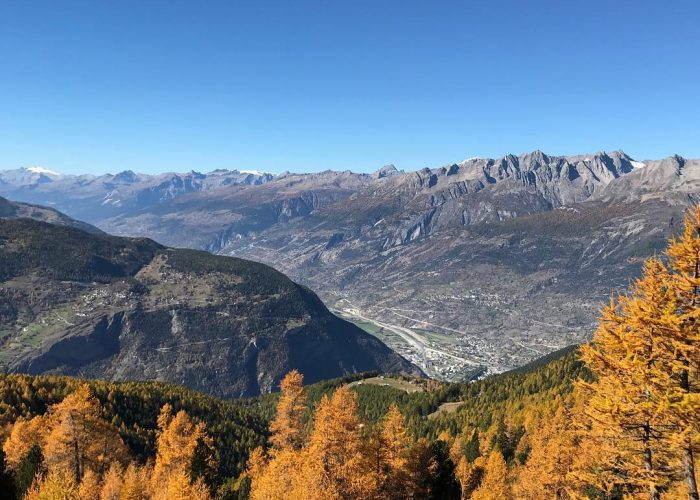 Visperterminen in Valais is home to the highest vineyard in Europe – known for its vineyard, which produces wine at an elevation of 650 to 1150 metres above sea level. Photo by Patrick Gasser @paedugasser
