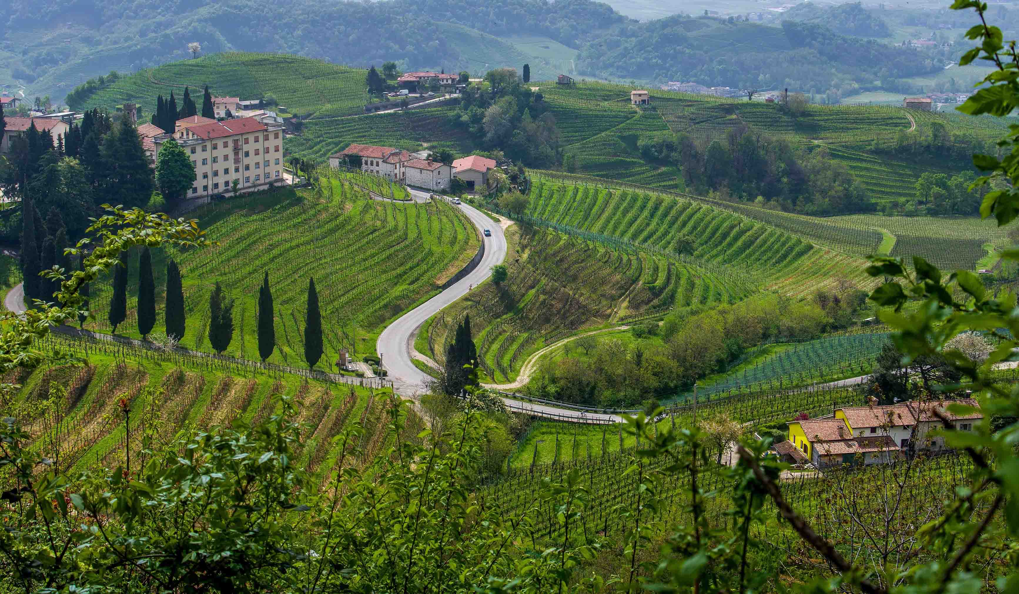 The Prosecco Hills