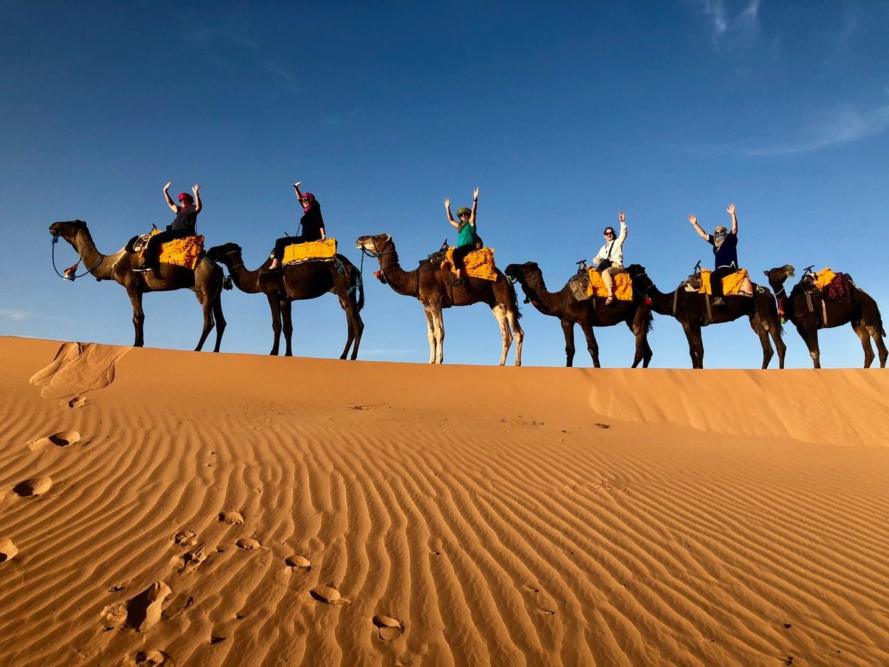 Camel riding on Family Travel with Virtuoso